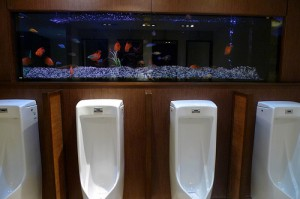Quit texting and check out the aquarium!